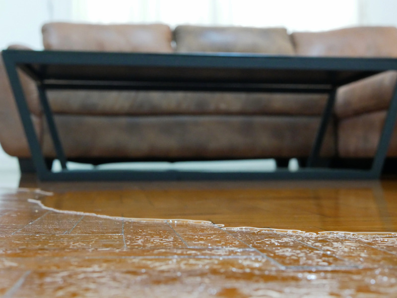 water damage restoration in Los Angeles.