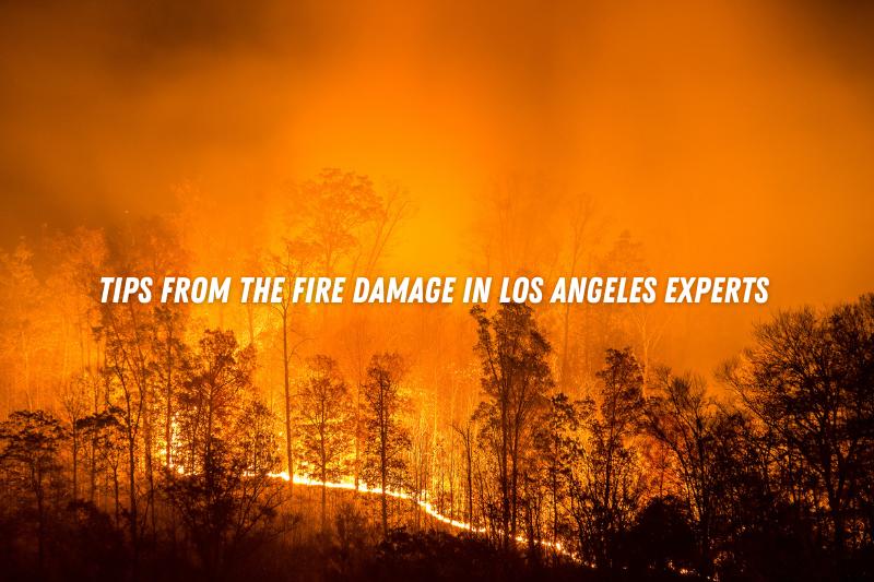 Fire Damage Los Angeles
